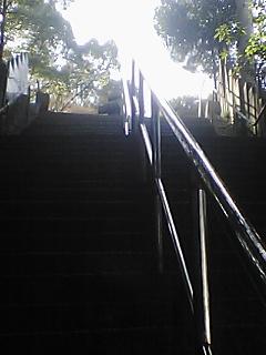階段の先にいたお大師さまの背中12:47.jpg